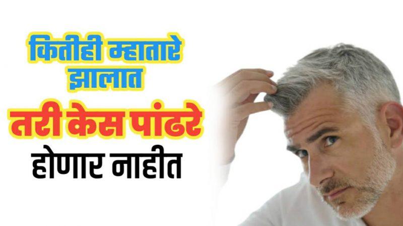 हा उपाय तुम्ही एकदा कराल तर कितीही म्हातारे झालात तरी तुमचे केस पांढरे होणार नाहीत..!