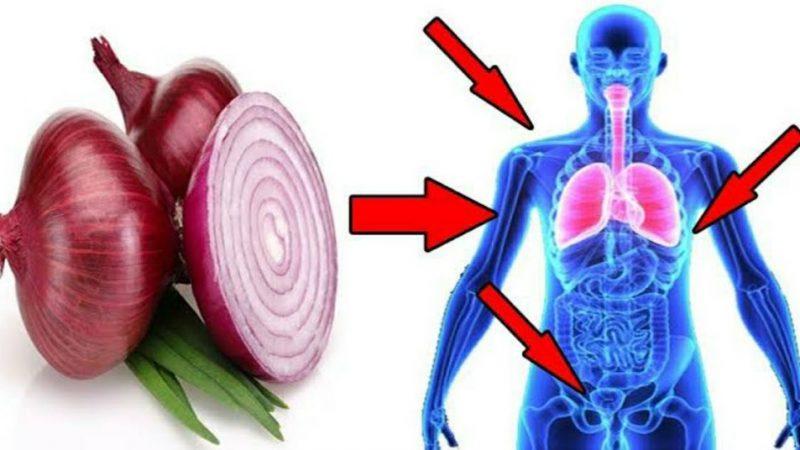 कच्चा कांदा खाणाऱ्यांनी हि माहिती एकदा अवश्य वाचा.. जाणून घ्या त्याचे फायदे व तोटे..!