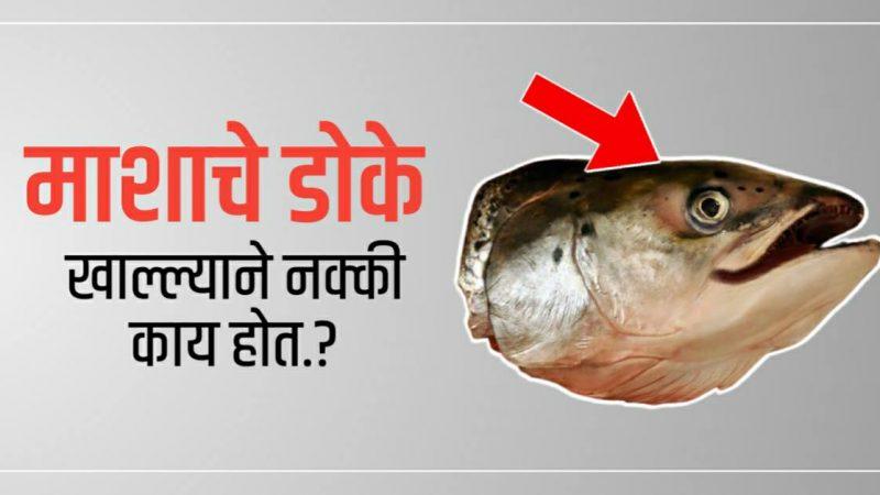 माश्याचे डोके खाताय..?  तर हि माहिती एकदा नक्कीच वाचा; परिणाम जाणून हैराण व्हाल..!
