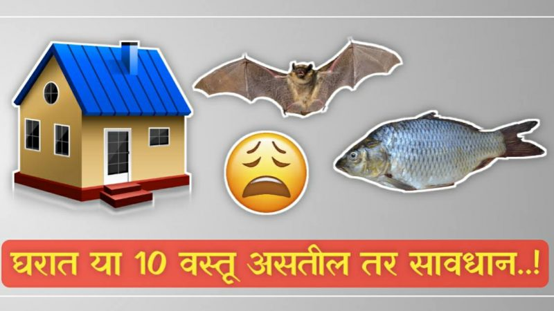 ज्या घरात असतात या १० वस्तू तिथे पैसा आणि सुख कधीच टिकत नाही..!